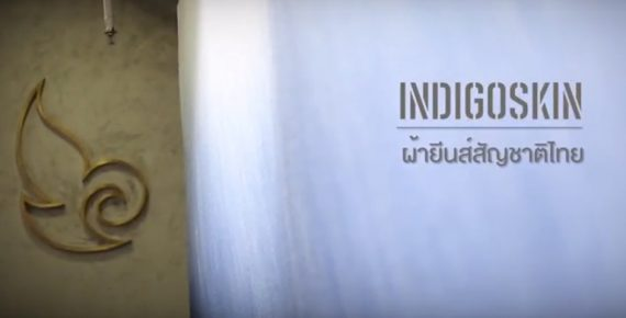 INDIGOSKIN